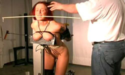 Whipping of redhead