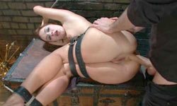 Girl ass fucked in hard bondage